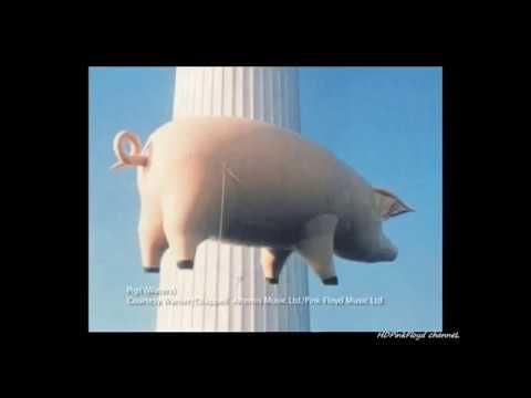 """Pink Floyd - """" Whatever Happened to Pink Floyd """""""