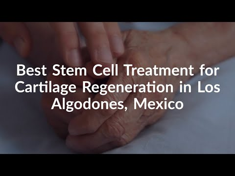 Best-Stem-Cell-Treatment-for-Cartilage-Regeneration-in-Los-Algodones-Mexico