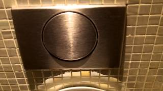 hmongbuy.net - Allia paris giant urinals and Geberit button with ...