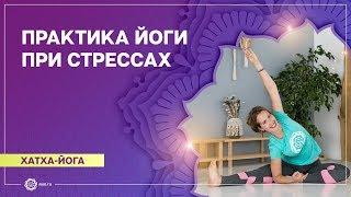 Йога для начинающих. Видео уроки. Успокаивающая практика Хатха йоги при стрессах. Надежда Шишканова