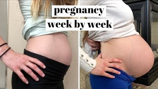 PREGNANCY TIME LAPSE  |  PREGNANT BELLY GROWING WEEK BY WEEK!