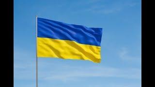 100 лет Соборности Украины