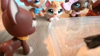 LPS : Zakręceni #14 Littlest Pet Shop !