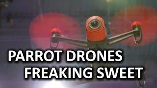 Parrot Bebop Drone & New Mini Drone Concept Devices - CES 2015