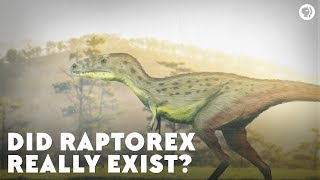 Did Raptorex Really Exist?