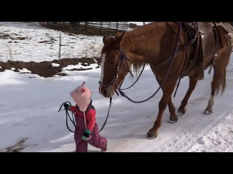 Little Girl and Horse are best friends