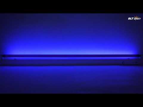 Fluorescent Blacklight Blue Tube