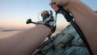 Рыбалка в арабских эмиратах с берега