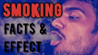 Top 5 smoking facts and effects you need to know || curious 5 #9
