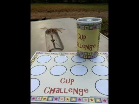 Screenshot of video: Stacking cup challenge