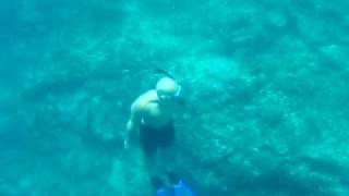 preview picture of video 'Free dive cave swim through Armando's Paradise St Thomas VI'