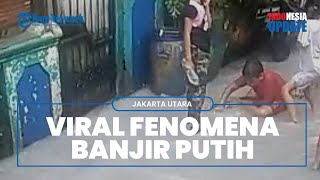 Viral Video Banjir Warna Putih seperti Susu di Sunter Jaya, Warga Mengaku Baru Pertama Kali Terjadi