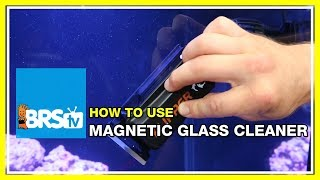 Clean Aquarium Glass with the Flipper Magnet Cleaner - BRStv How-To