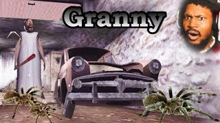 WARNING: IF YOU DON'T LIKE SPIDERS, THIS AIN'T IT CHIEF   Granny (NEW Update)