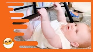 Adorable Babies Doing Funny Things -  Cute Baby Videos