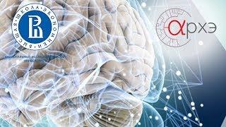 "Анна Шестакова: ""Мозг и Реклама. Основы Нейромаркетинга"""