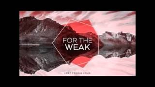 Lost Frequencies - Sleep/For the weak (lyrics)