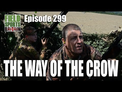 Fieldsports Britain – The Way of The Crow