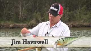 Rapala shad rap super