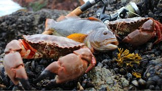 Coastal Foraging: Greenling, Crab, Mussels, Urchin Dinner on the Beach