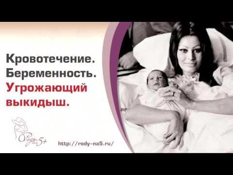 Молитва честному кресту текст на русском языке для печати