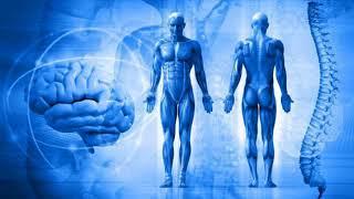 Биофизика в медицине (рассказывает профессор Евгений Маевский)