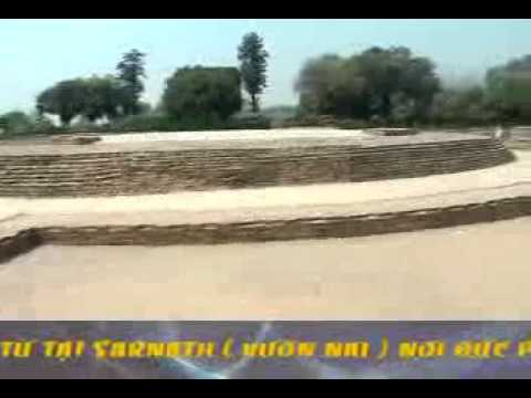 Phật Tích Ấn Độ 3: Sarnath - Nơi Phật Chuyển Pháp Luân (04/2009)