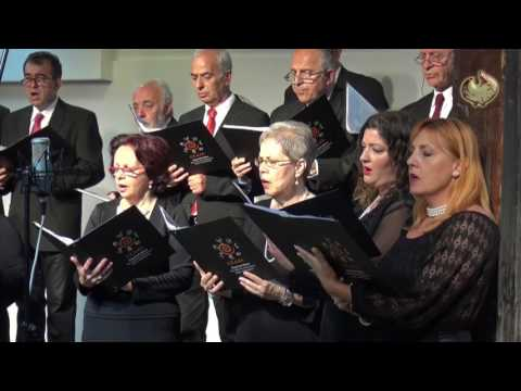The choir of the conservatory of Kalamaria