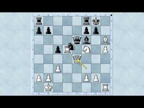 Neverovatni mat - MILMAN vs FANG - Najlepše šahovske partije Milmana - Caro-Kann # 1043