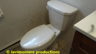 toilet leaks when i pee on it