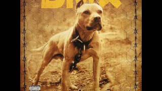 DMX - Get It On The Floor + LYRICS