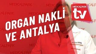 Organ Nakli ve Antalya   Medical Park   TV