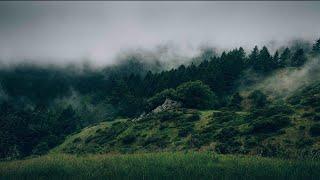 Musik-Video-Miniaturansicht zu Shiny Suit Theory Songtext von Jay Electronica