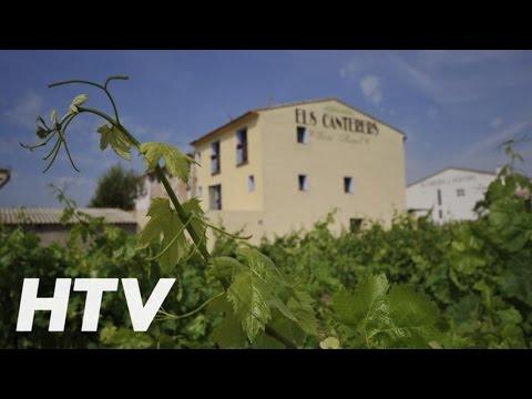 Els Canterers, Bed and breakfast en Miravet
