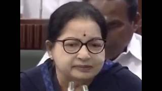Jayalalitha Angry Speech Against Stalin in Assembly - Trending