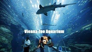 Viyana Hayvanat Bahçesi Akvaryumu