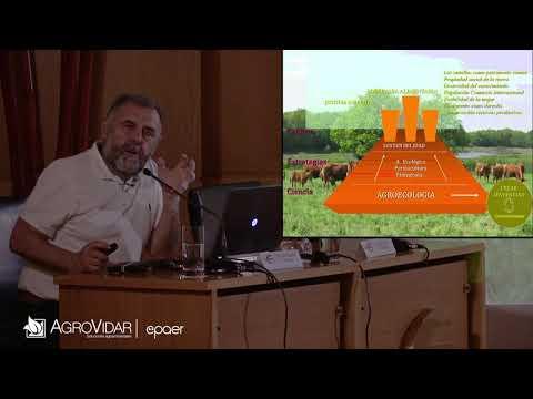 Fotograma del vídeo: ¿Por qué enferman las plantas? Una visión Agroecológica