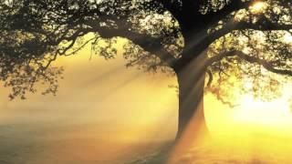 Mantra For Compassion And Healing   Guru Ram Das Chant By Mirabai Ceiba