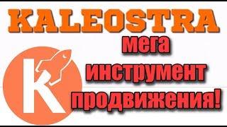 KALEOSTRA - Мега инструмент по продвижению и заработку!