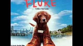 Fluke OST 18. ForeverThe Squirrel