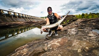 Catching Monster Fish Trapped In Tiny Pools!!! (Very Rare!)