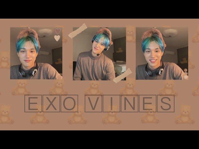EXO vines to watch during quarantine