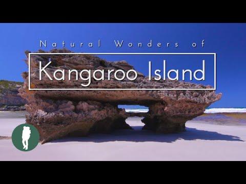 אי הקנגורו - גן העדן האבוד של אוסטרליה