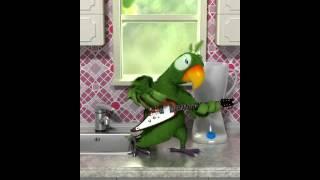 попугай играет на гитаре¡!!