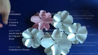 How To Make Hydrangea Paper Flower Free Video Search Site Findclip