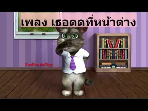 เม็ดแมวหนอนต่อเมตร