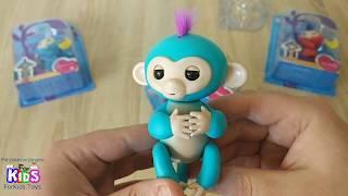 Интерактивная обезьянка от компании Всякие штучки - видео