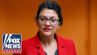 Tlaib says she will not visit Israel after ban is lifted on her entry
