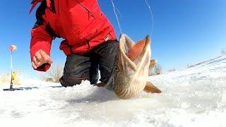 Ловля щук на малых речках зимой