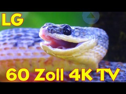 """""""LG 60 UF7709 / 60 ZOLL 4K ULTRA HD TV"""" -Vorstellung des tollen Fernsehers"""